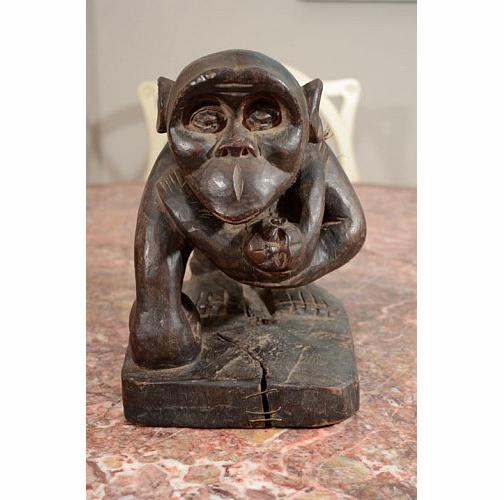 Chimpanzee Thumbnail