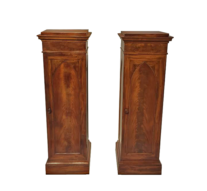 A Fine Pair of 19th Century Mahogany Pedestal Cupboards